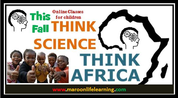 Think Science Think Africa3